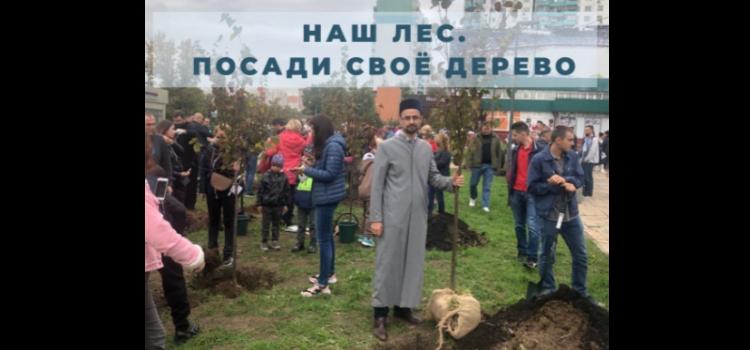 Камиль хазрат Маннапов принял участие в акции «Наш лес. Посади своё дерево»